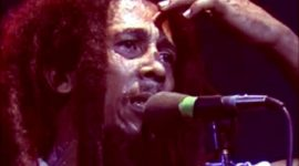 Bob Marley Bio, Net Worth, Facts