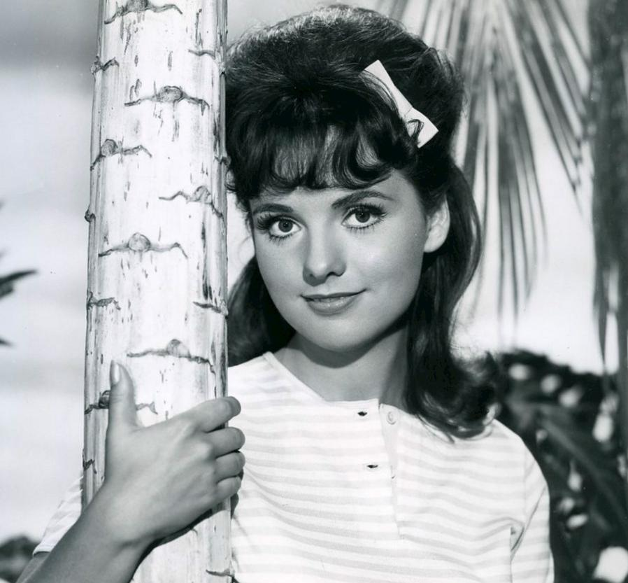 Dawn Wells Bio, Net Worth, Facts