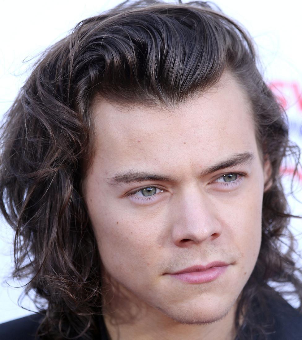 Harry Styles Bio, Net Worth, Facts
