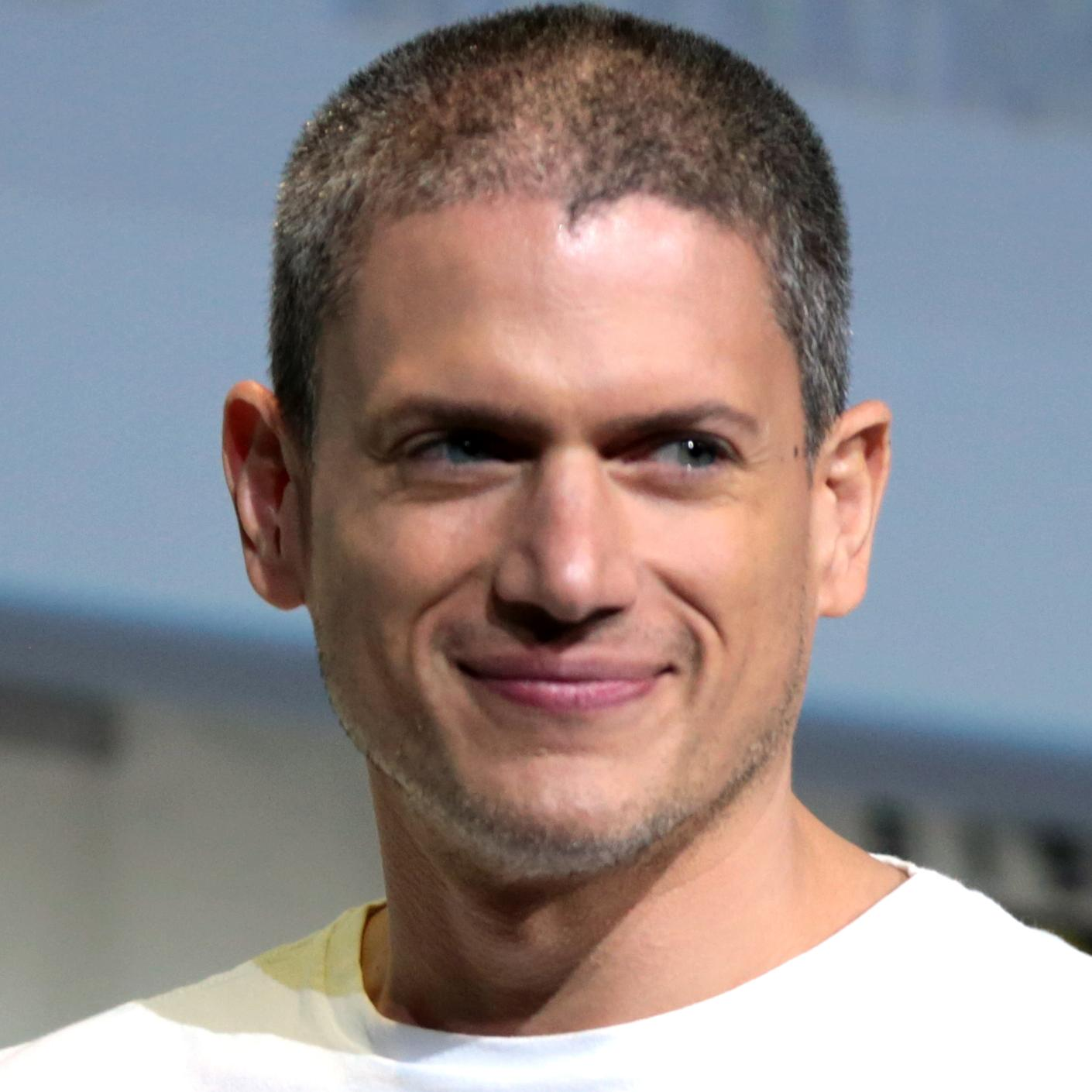 Wentworth Miller Net Worth 2019 Height Age Bio And Facts