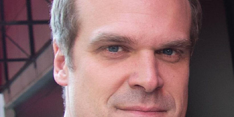 David Harbour Bio, Net Worth, Facts