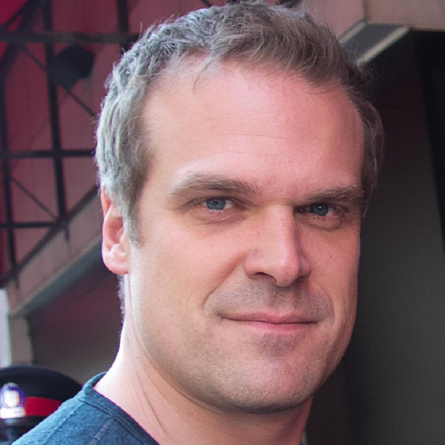 David Harbour Bio, Net Worth, Facts